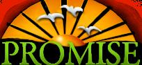 Promise in Brevard Logo