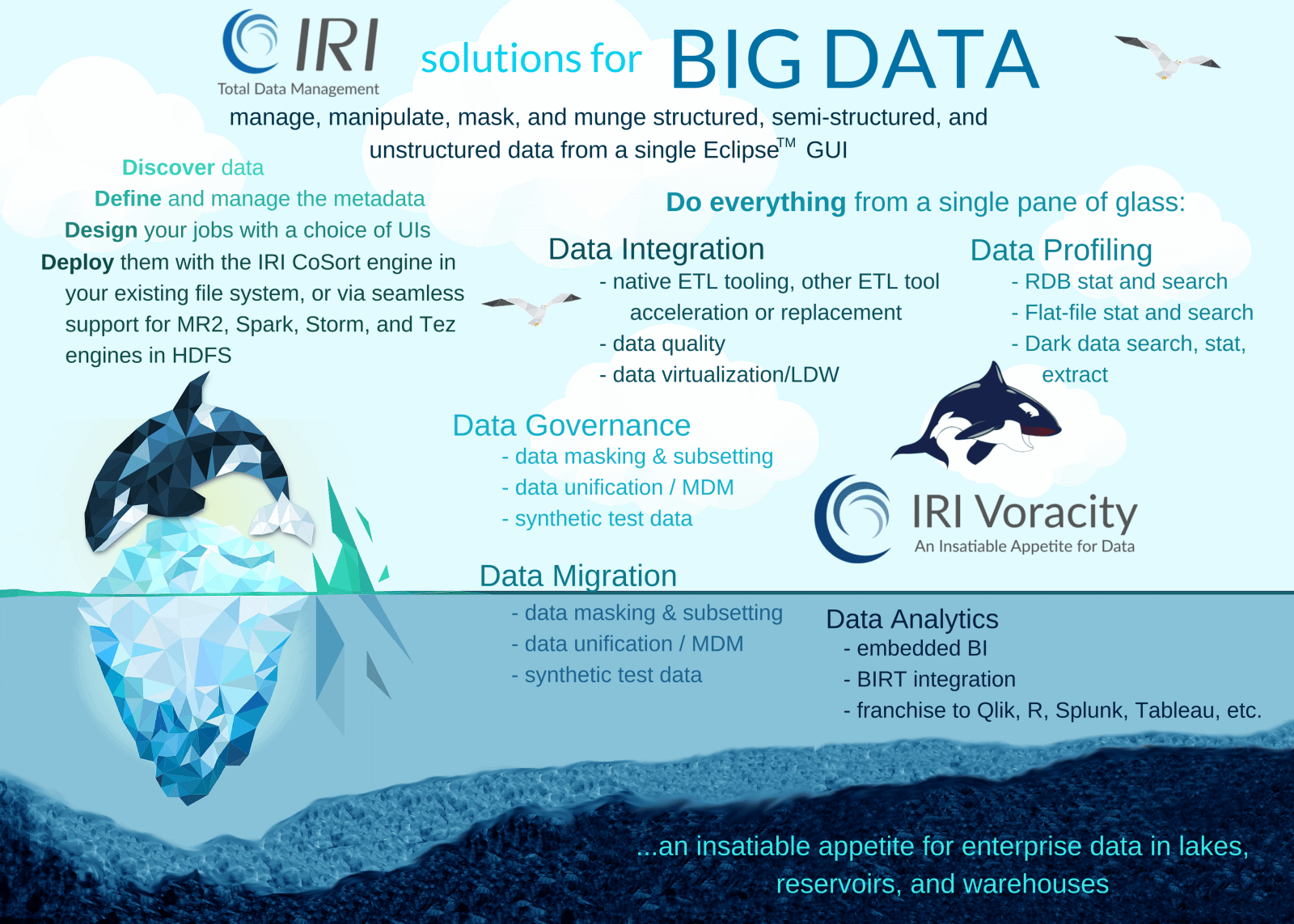 IRI big data solutions