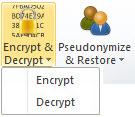 Encrypt Decrypt button