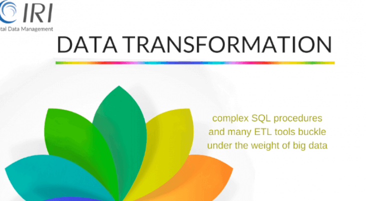 Data Transformation Infographic