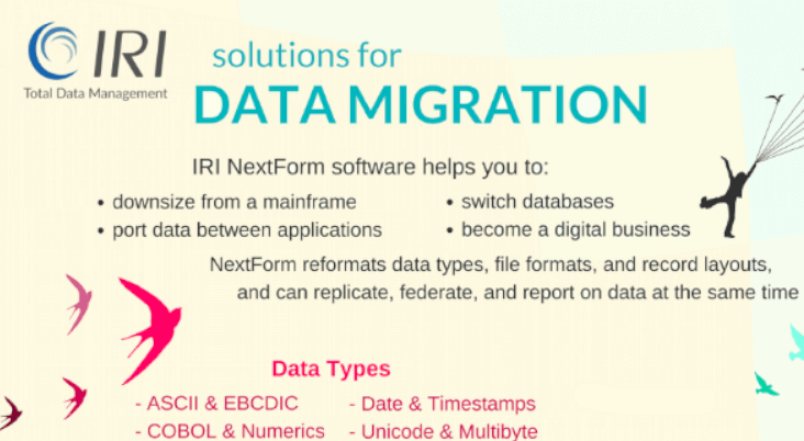 Data Migration Infographic