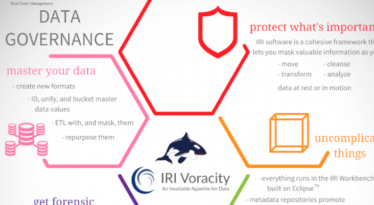 Cropped version of IRI data governance infographic